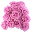 Bouquet of roses over white background — Foto de Stock