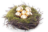 Easter eggs and chicks — Stock Photo