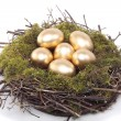 Golden eggs in bird nest over white — Stock Photo