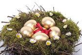 Golden eggs in bird nest over white background — Stock Photo