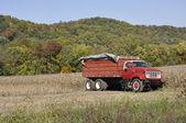Red farm truck — Stock Photo