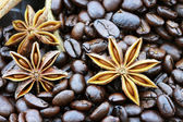 Star Anise and Coffee Beans — Stock Photo
