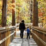 jeune mère et enfant marchant — Photo