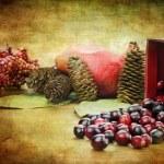 Cranberry Still Life — Stock Photo