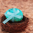 Foto de Stock  : Blue Speckled Easter Egg