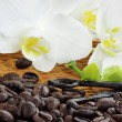 Royalty-Free Stock Photo: Gourmet Coffee Ingredients