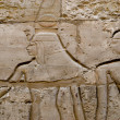 Wall reliefs in Karnak Temple — Stock Photo #4316396