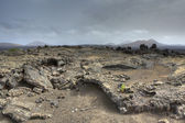 Lava fields — Stock Photo