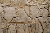 Wall reliefs in Karnak Temple — Stock Photo