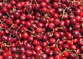Reife rote kirschen auf einem bauernmarkt — Stockfoto
