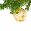 Christmas Tree Holiday Ornament Hanging from a Evergreen Branch Isolated — Stock Photo #3970025