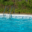 Blue Swimming Pool Water. Ladder, and Pool Edge in Full Sunlight — Stock Photo #4282538