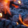 Background of Flames and Glowing Embers in a Campfire — Stock Photo #4581687