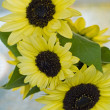 Close Ups of a Bunch of Sunflowers in a Vase — Stock Photo