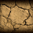 Parched and Cracked Dry Ground in Full Sunlight — Stock Photo