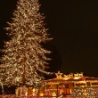 A large evergreen tree is decorated with from top to bottom with Christmas — Стоковая фотография