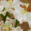 Casablanca White Lilies Closeup Showing Flower Details — Stock Photo #5179068