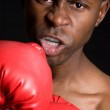 Professional Boxer — Stock Photo #4040000