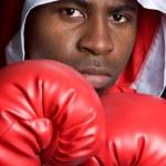 ������, ������: Boxer Man