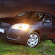Stock Photo: Car on grass at night, lighting headlight