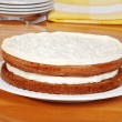 Carrot cake with plates and napkin — Stock Photo