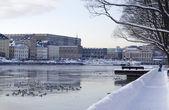 Stockholm kalesi — Stok fotoğraf