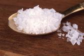 Salt spoom — Stock Photo