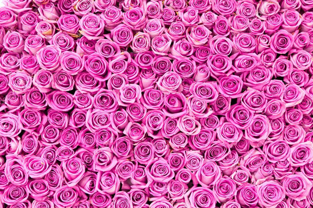 букет рози фото