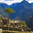 Houses of Machu Picchu — Stock Photo