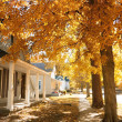 Fall in small town — Stockfoto #3968831