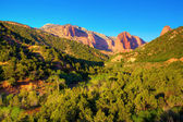 Zion National Park — Stock Photo