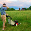 Stock Photo: Mowing Job