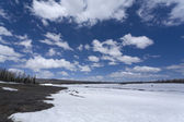 Snowy Field — Stock Photo