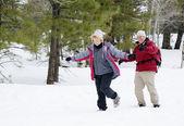 Active Retired Couple — Stock Photo