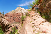 Hikers in Zion — Stock Photo