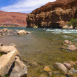 Stock Photo: Colorado River Bank
