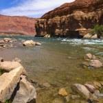 Colorado River Bank — Stock Photo #5134026
