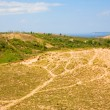 Stock Photo: Michigan dunes