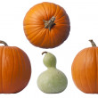 Pumpkins and Gourd — Stock Photo