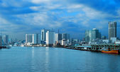 Tokio a kind on a city from the sea — Stock Photo