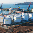 Petrochemical terminal - Stockfoto
