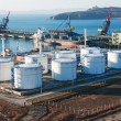 Foto de Stock  : Petrochemical terminal