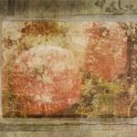 Grunde background pomegranate — Stock Photo