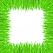 Grass frame — Stock Vector #5315574