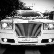 Limousine — Stock Photo #5302706