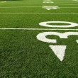 Football field — Photo