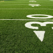 Royalty-Free Stock Photo: Football field