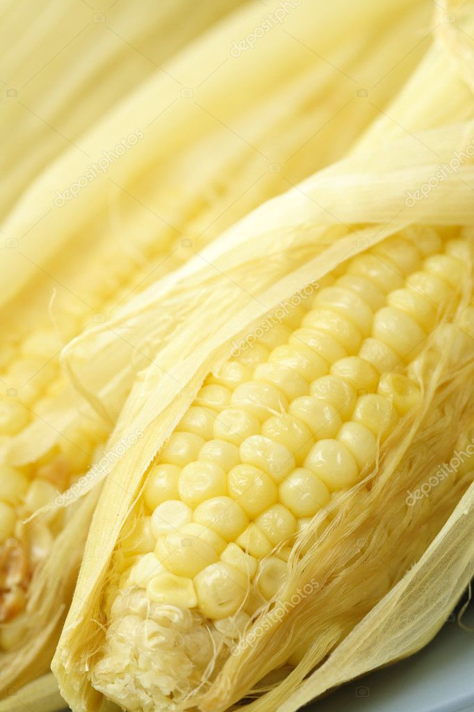 A macro shot of delicious sweet yellow corn — Stock Photo #4113591