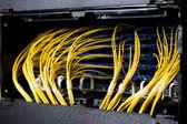 Kable sieciowe — Zdjęcie stockowe