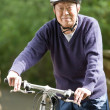 Royalty-Free Stock Photo: Senior asian biking